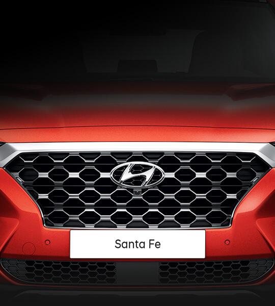 Cascade grill - Hyundai Santa Fe